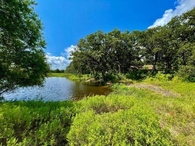 9873 Fm 1388, Scurry, TX 75158 (MLS #14675843) :: Real Estate By Design