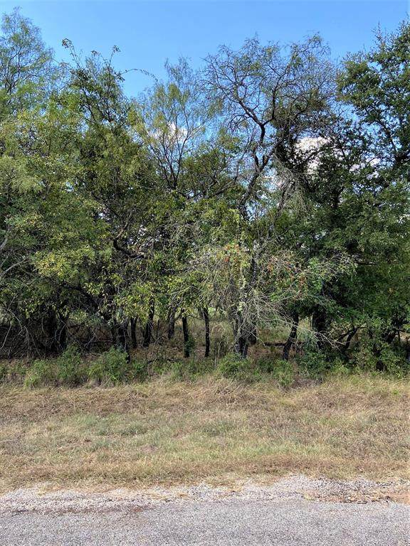 1617 Oak Springs Drive, Whitney, TX 76692 (MLS #14676167) :: The Russell-Rose Team