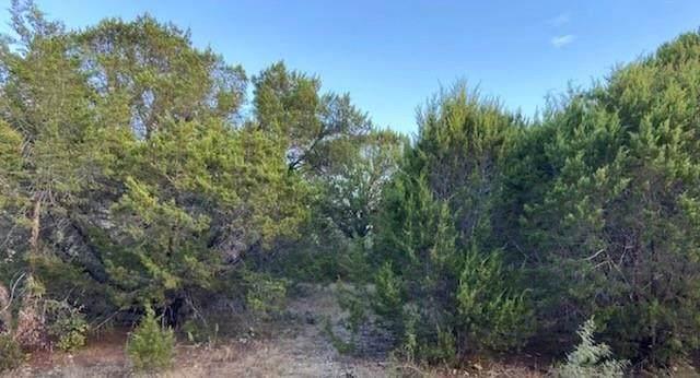 1109 Apache Ridge Road, Granbury, TX 76048 (MLS #14677138) :: Craig Properties Group