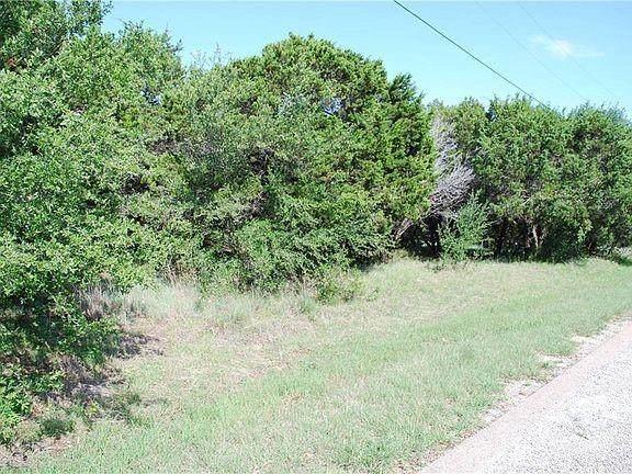 25061 Woodmont Drive, Whitney, TX 76692 (MLS #14678052) :: Feller Realty
