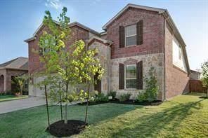 1800 Megan Creek Drive, Little Elm, TX 75068 (MLS #14678169) :: The Hornburg Real Estate Group