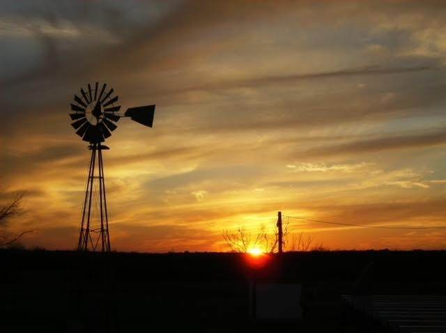 915 Old Oran Road, Perrin, TX 76486 (MLS #14688854) :: The Chad Smith Team