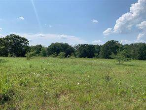 TBD Cr 4721 - Tract A - Photo 1