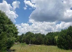 Lot 47 Longview Drive, Lampasas, TX 76550 (MLS #14690251) :: Trinity Premier Properties