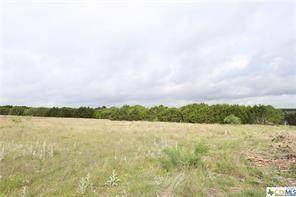 Lot 52 Longview Drive, Lampasas, TX 76550 (MLS #14690928) :: Trinity Premier Properties