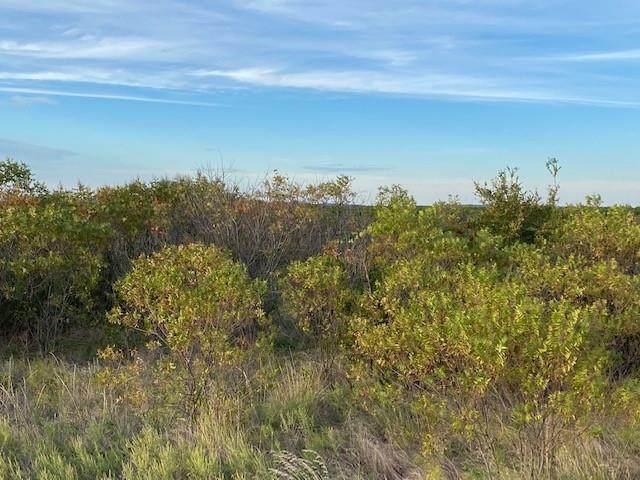Lot Shooting Star Court, Possum Kingdom Lake, TX 76449 (MLS #14693194) :: The Chad Smith Team
