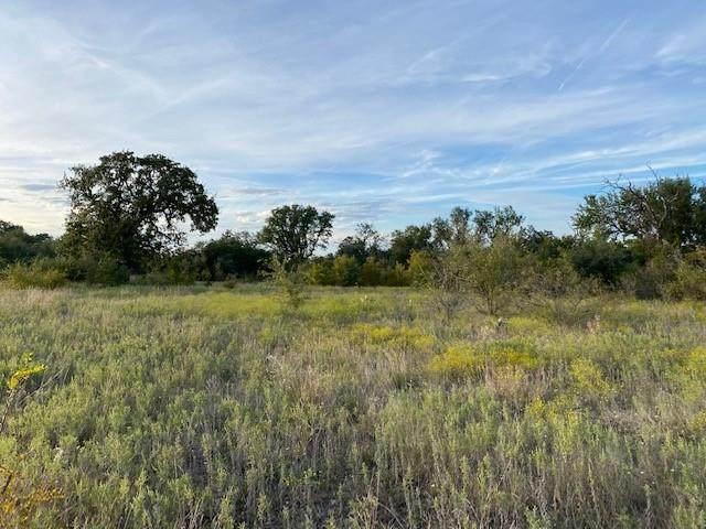 Lot 293 Shooting Star Court, Possum Kingdom Lake, TX 76449 (MLS #14693227) :: The Krissy Mireles Team