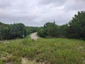 TBD Creek Canyon Lane, Mckinney, TX 75071 (MLS #14699581) :: Hargrove Realty Group