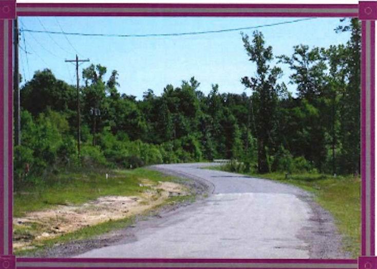 0 Walden Ferry Road - Photo 1