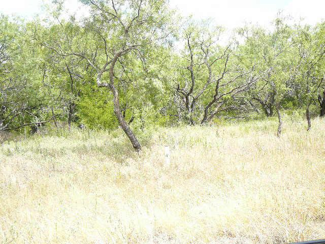 219 Lark Meadow Drive - Photo 1