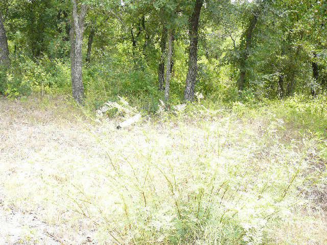 102 Lark Meadow Drive - Photo 1