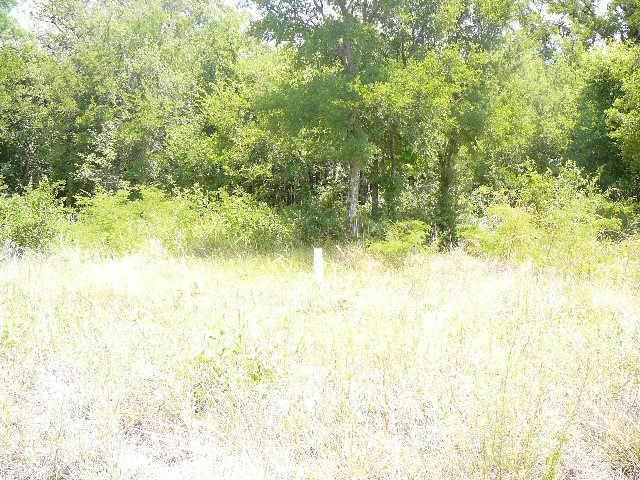 109 Shady Springs Drive - Photo 1