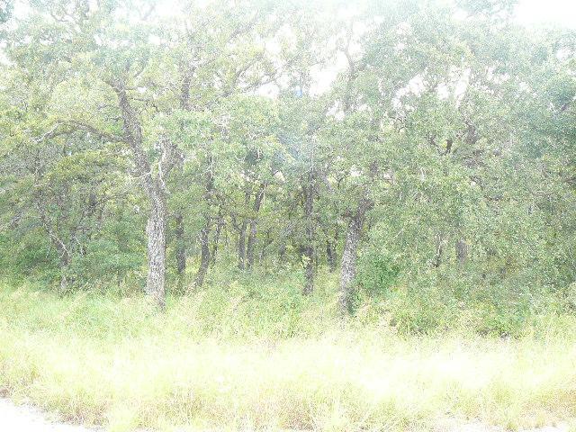 309 Lark Meadow Drive, Runaway Bay, TX 76426 (MLS #10677314) :: Robbins Real Estate Group
