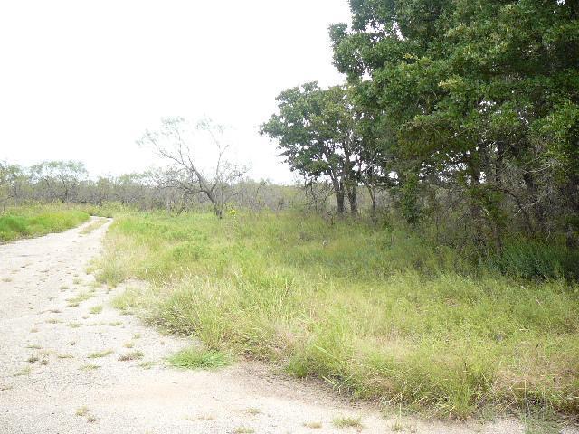 301 Lark Meadow Drive, Runaway Bay, TX 76426 (MLS #10677325) :: Robbins Real Estate Group