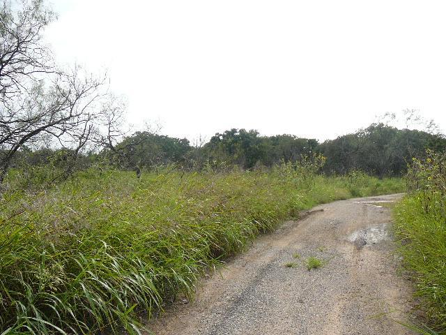 420 Sleepy Meadow Drive, Runaway Bay, TX 76426 (MLS #10677334) :: Robbins Real Estate Group