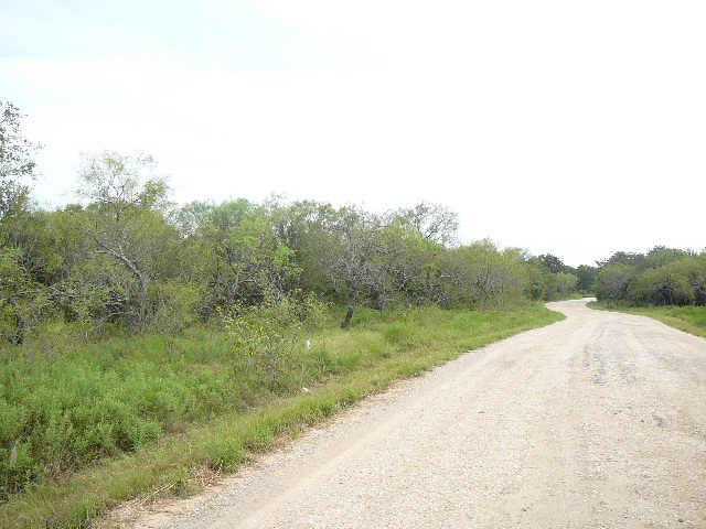 203 Sleepy Meadow Drive - Photo 1