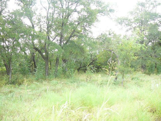107 Woodland Way, Runaway Bay, TX 76426 (MLS #10678626) :: Robbins Real Estate Group