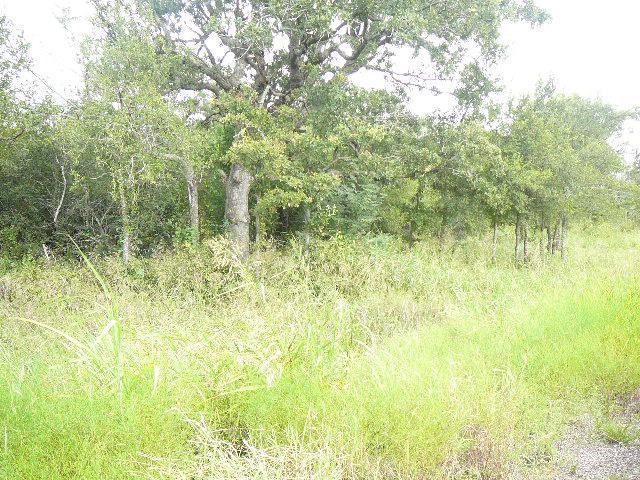 207 Woodland Way - Photo 1