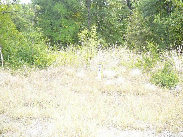417 Sleepy Meadow Court, Runaway Bay, TX 76426 (MLS #10678981) :: RE/MAX Landmark