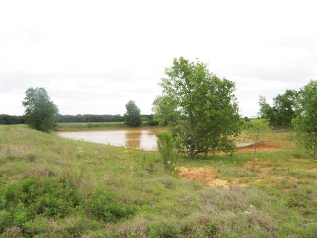 0 County Road 433 - Photo 1