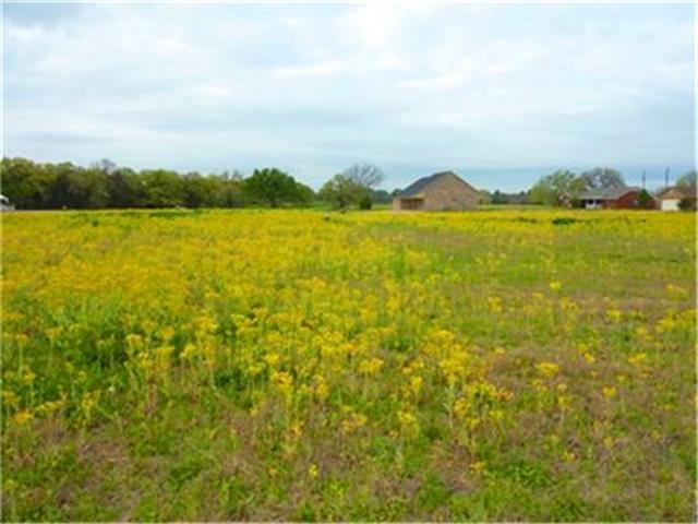 Lot 19 Carroll Drive, Teague, TX 75860 (MLS #11928923) :: The Mitchell Group