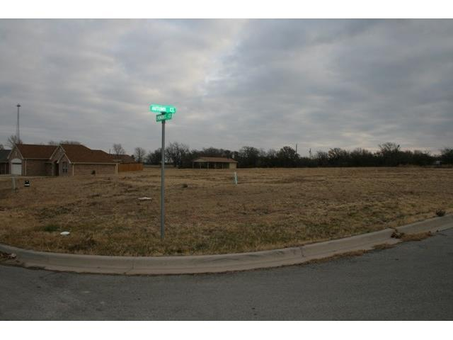 2212 Springhill Court, Mineral Wells, TX 76067 (MLS #13097881) :: Robbins Real Estate Group