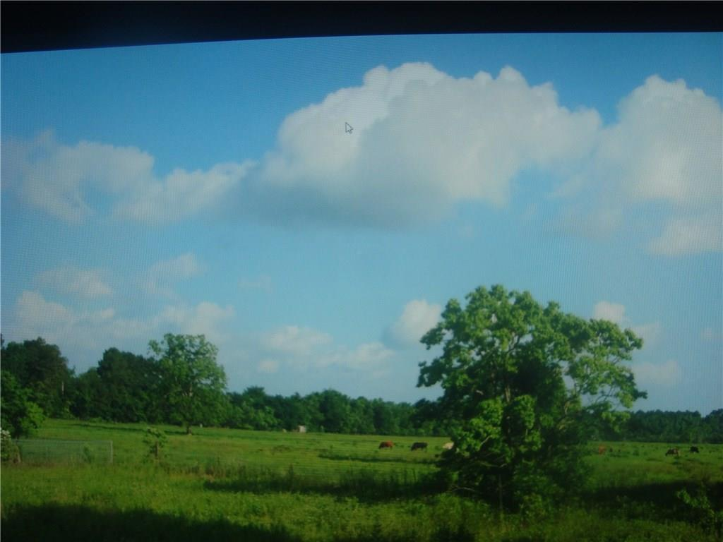 954 Mlk Fm 160 Road - Photo 1