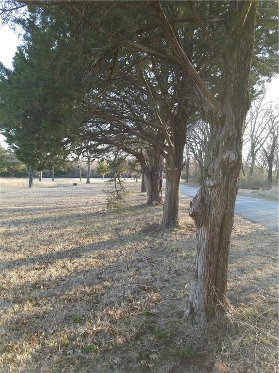55 Crescent Drive, Pottsboro, TX 75076 (MLS #13573422) :: RE/MAX Town & Country