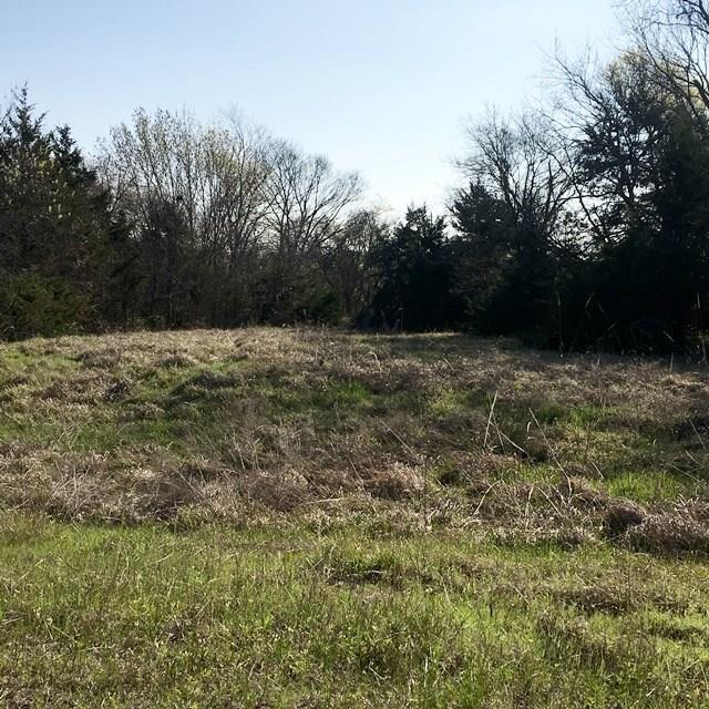 Lot 16 Karen Sue Court, Quinlan, TX 75474 (MLS #13798799) :: Team Hodnett