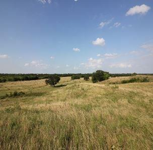 Lot 3 Mosley Road, Ennis, TX 75119 (MLS #13810614) :: The Real Estate Station