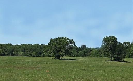 1125 Friendship Road, Weatherford, TX 76085 (MLS #13913658) :: Team Tiller