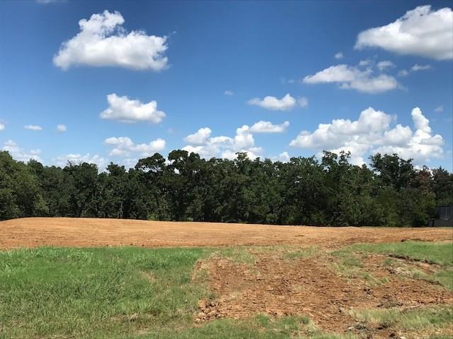 7309 Heritage Oaks Drive, Mansfield, TX 76063 (MLS #13929113) :: Magnolia Realty