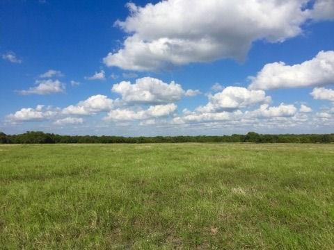 TBD Country Road 632, Blue Ridge, TX 75424 (MLS #13936637) :: The Heyl Group at Keller Williams