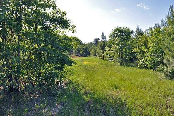67.6 Acres - Cr 2145, Talco, TX 75487 (MLS #13957898) :: RE/MAX Town & Country