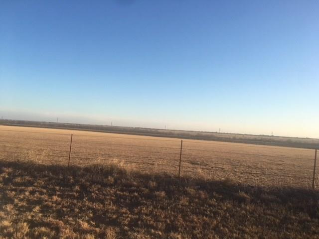 20 ac. W Fm 922, Valley View, TX 76272 (MLS #13993964) :: The Real Estate Station