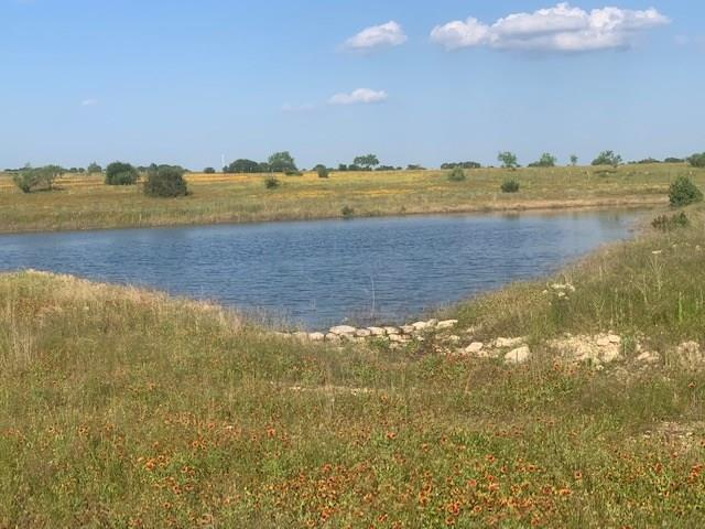 23495 E State Hwy 6, Hico, TX 76457 (MLS #14083062) :: Robbins Real Estate Group