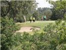 42092 Crooked Stick Drive - Photo 25