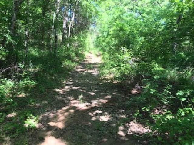 0 Blarey Lane, Kemp, TX 75143 (MLS #14195264) :: The Kimberly Davis Group