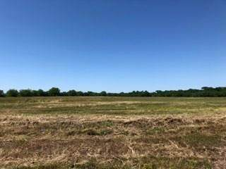 13TBD County Road 3228, Lone Oak, TX 75453 (MLS #14250246) :: Team Hodnett