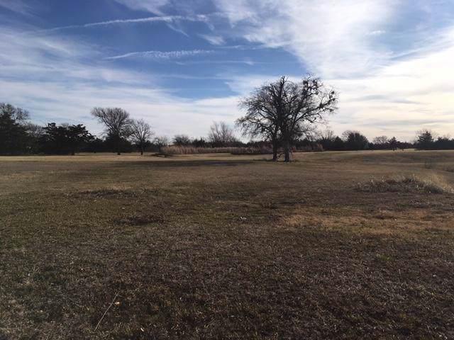 31 Palmer Lane, Pottsboro, TX 75076 (MLS #14253007) :: The Chad Smith Team