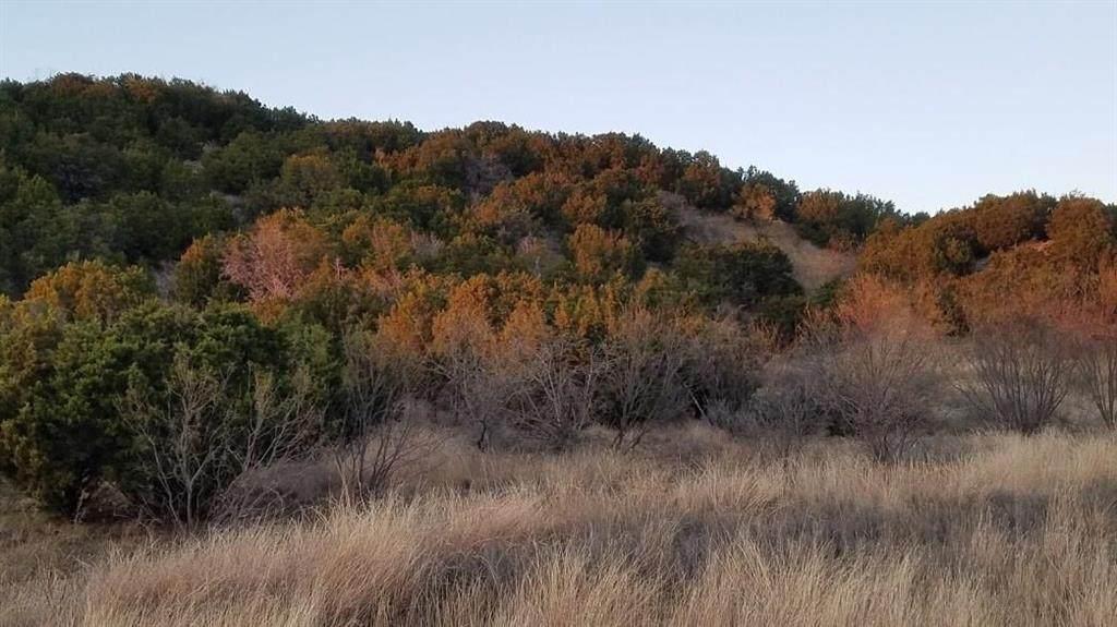Lt 141 Canyon Wren Loop - Photo 1