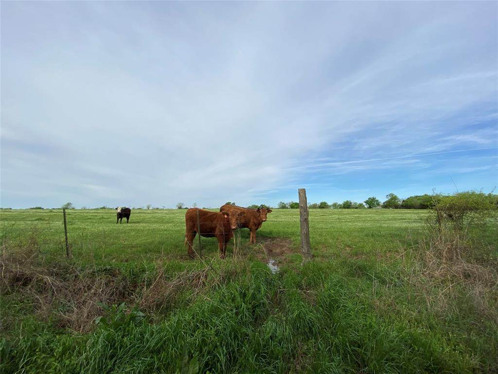 000 County Road 3561 - Photo 1