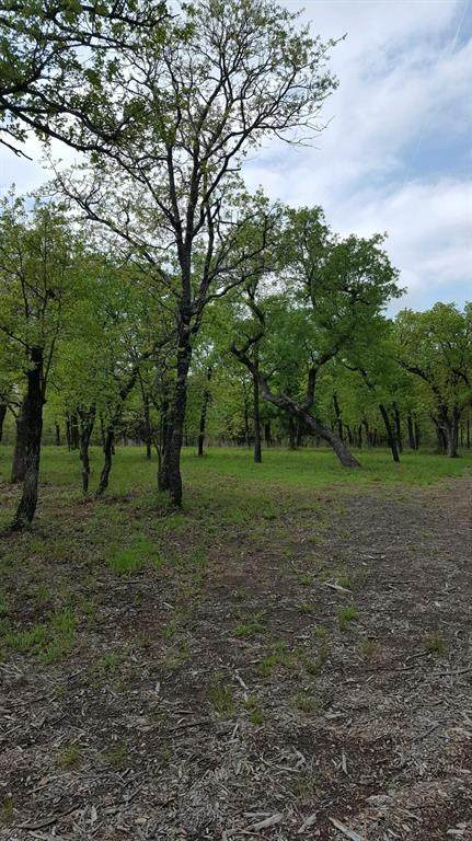 373 Silver Leaf Drive, Bowie, TX 76230 (MLS #14313504) :: Robbins Real Estate Group