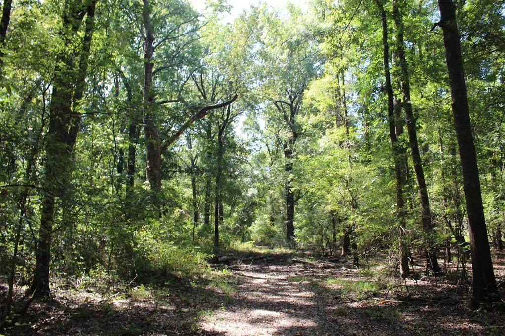 Tct 115 Triple Creek Rd - Photo 1
