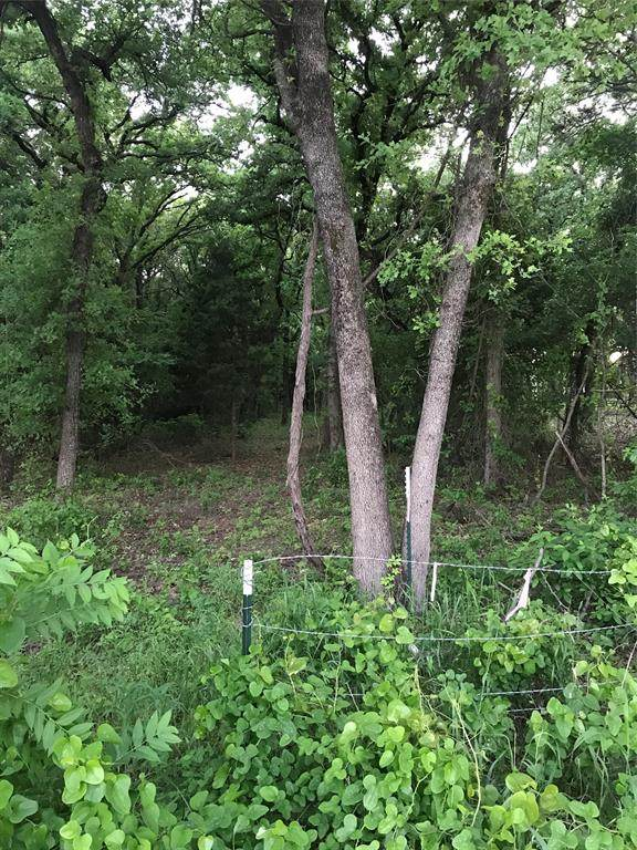 840 County Rd 2535, Decatur, TX 76234 (MLS #14340013) :: Justin Bassett Realty