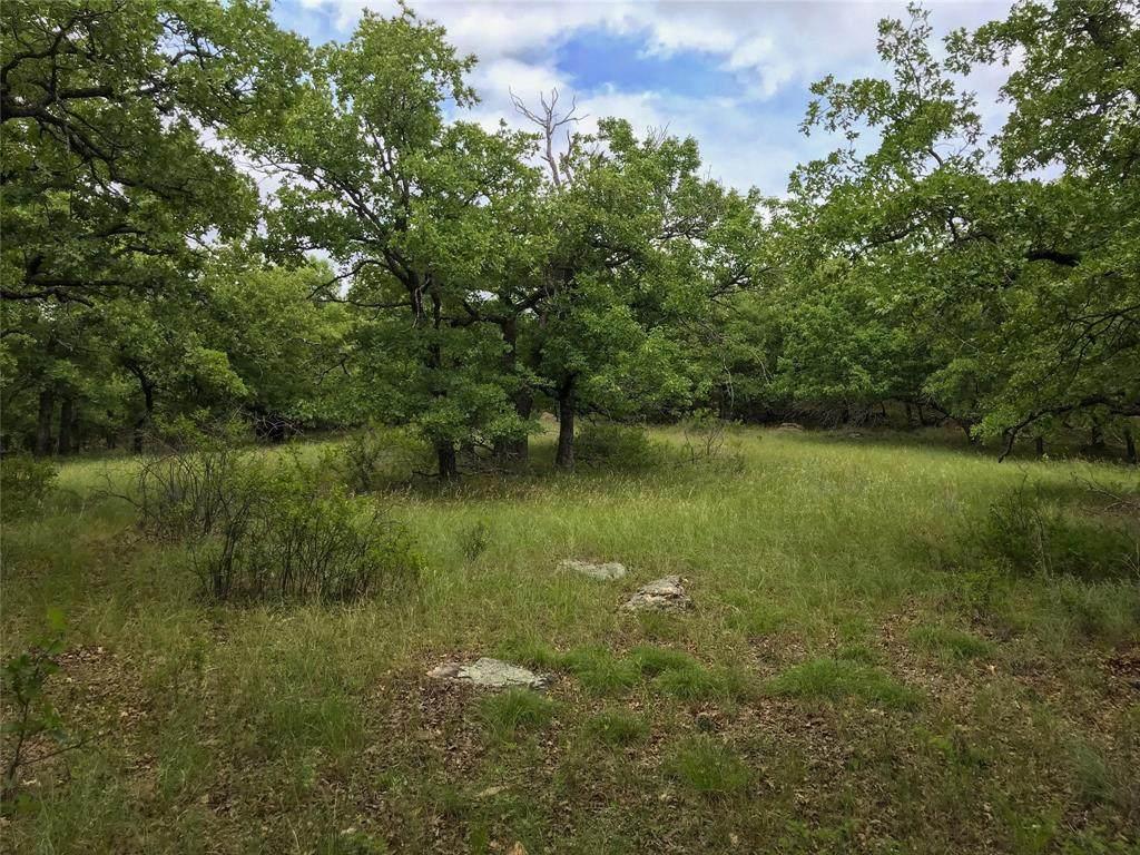 1061 Whispering Oaks Trail - Photo 1