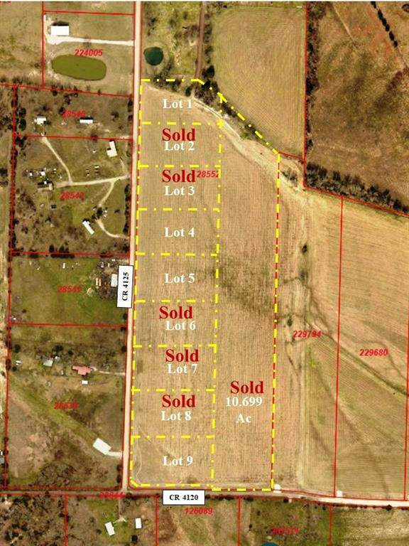 Lot 9 Cr 4125, Campbell, TX 75422 (MLS #14367269) :: The Juli Black Team