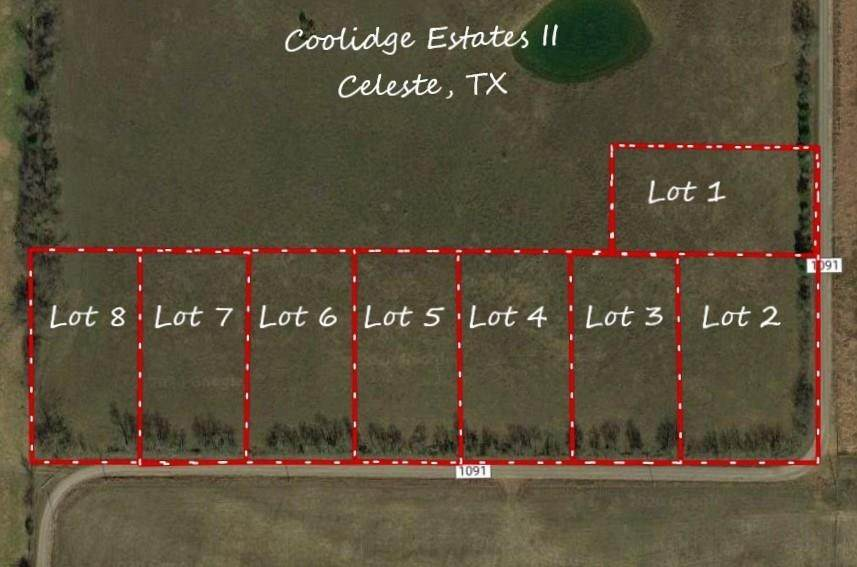 Lot 1 County Road 1091 - Photo 1