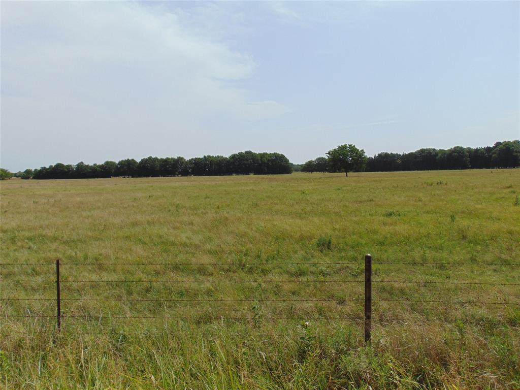 TBD-2 County Road  2190 - Photo 1