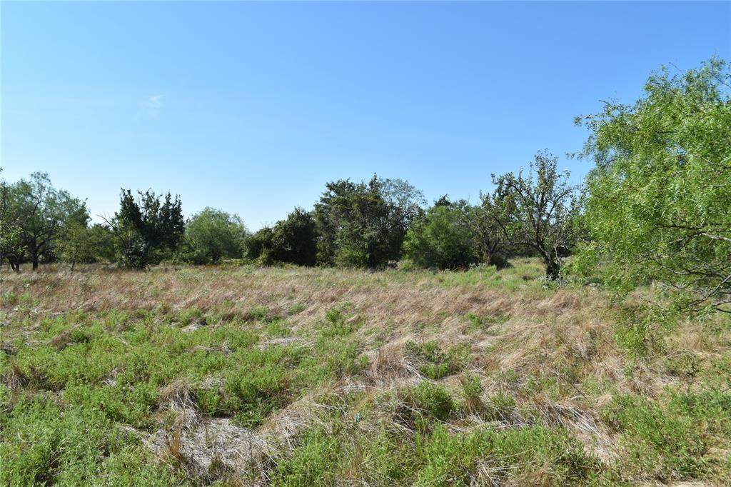 TBD Burleson Retta Road - Photo 1